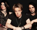 sickpuppies_1240x800